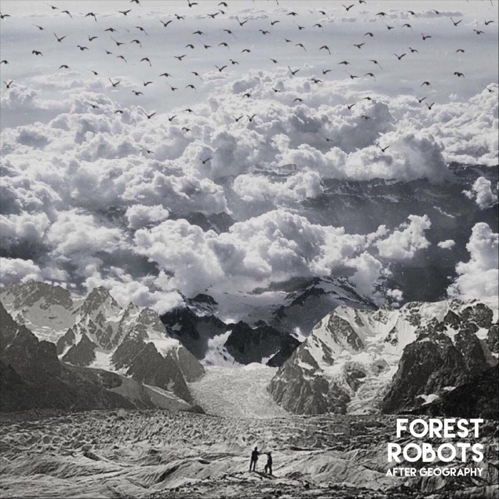 Best Albums of 2020: Forest Robots 'After Geography'